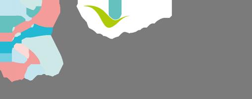 logo-clinique-du-val-d-ouest